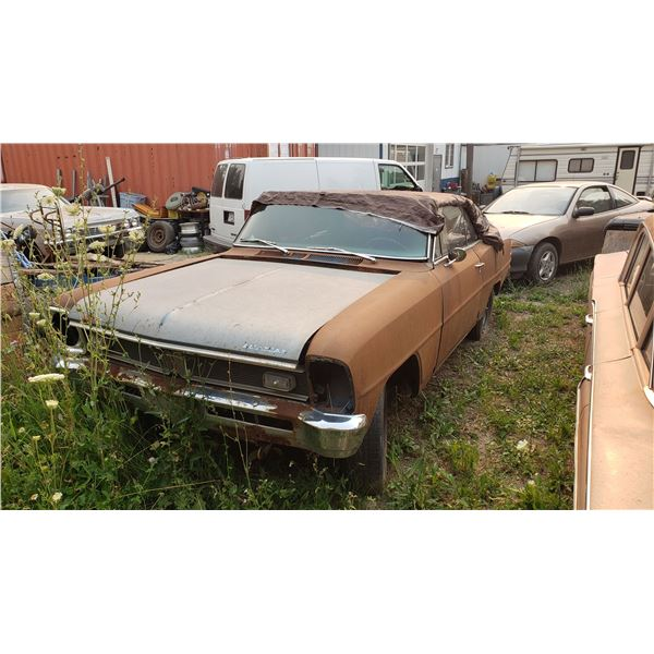 1967 Pontiac Acadian Super Deluxe - 2dr HT, 1 of 370, good body, needs 1/4 skins
