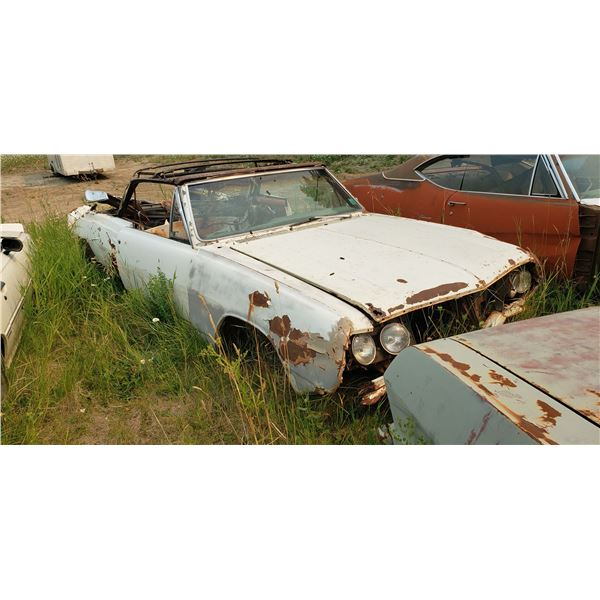 1965 Chevy Chevelle - convertible, rough, parts, had tags