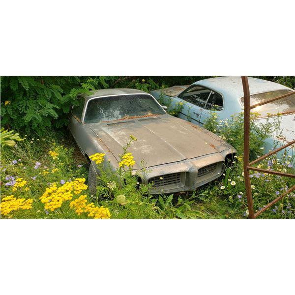 1972 Pontiac Firebird - parts or restore
