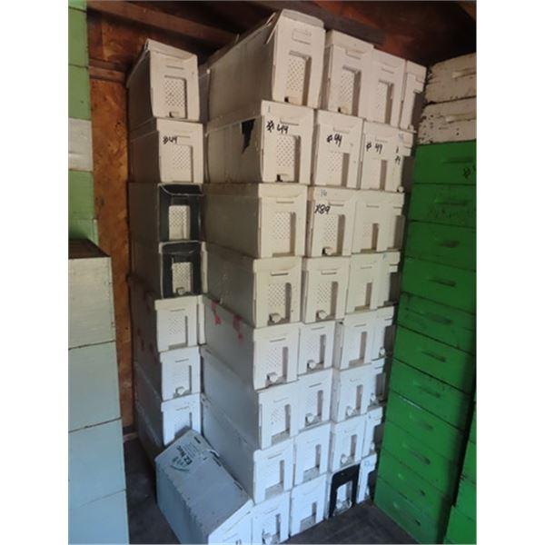 89 Honey Nuc Boxes