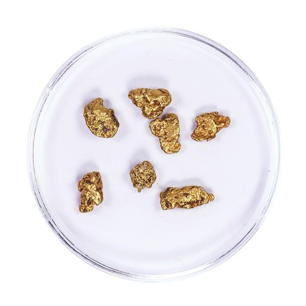 Lot of Gold Nuggets 3.26 grams Total Weight