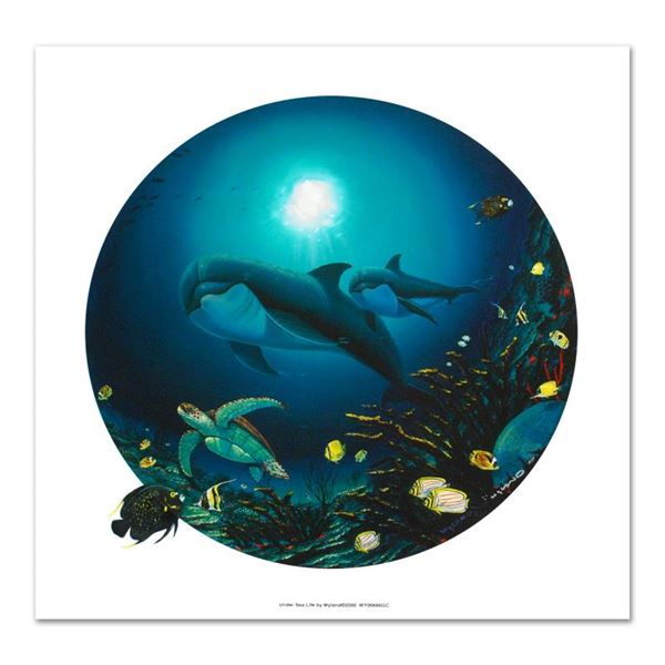 """Wyland """"Undersea Life"""" Limited Edition Giclee on Canvas"""