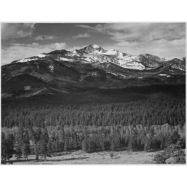 Adams - Rocky Mountain National Park Colorado 8