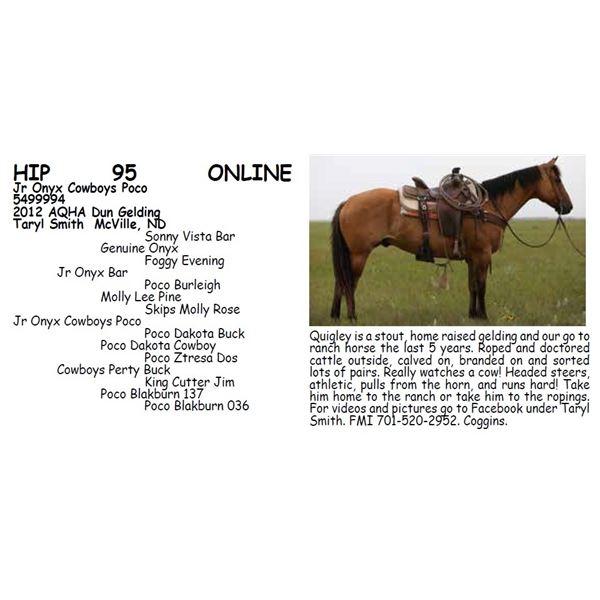 Jr Onyx Cowboys Poco