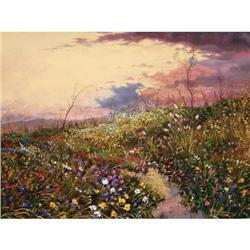 Tom de Decker, Oil on Canvas