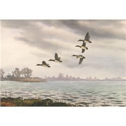 David Hagerbaumer, Watercolor