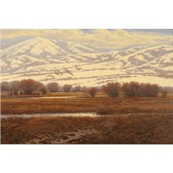 Jim Morgan, Oil on Canvas