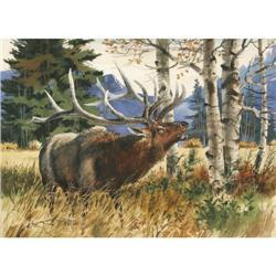 David Jackson, Watercolor
