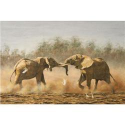 Simon Combes, Oil on Canvas