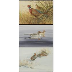 Janeen A. Schissler, 3 Watercolors