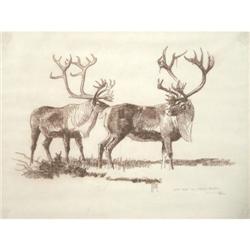 278: Bob Kuhn, Conte Drawing