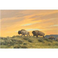 398: Bill Freeman, Oil on Canvas