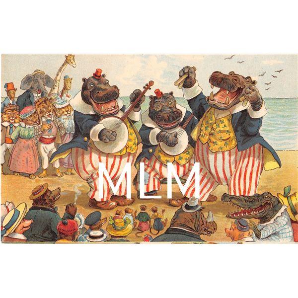 Dressed Animal Fantasy Hippopotamus Band Antique Greeting Postcard