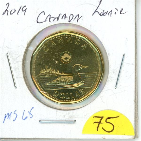 2019 loonie MS65 from roll low mintage
