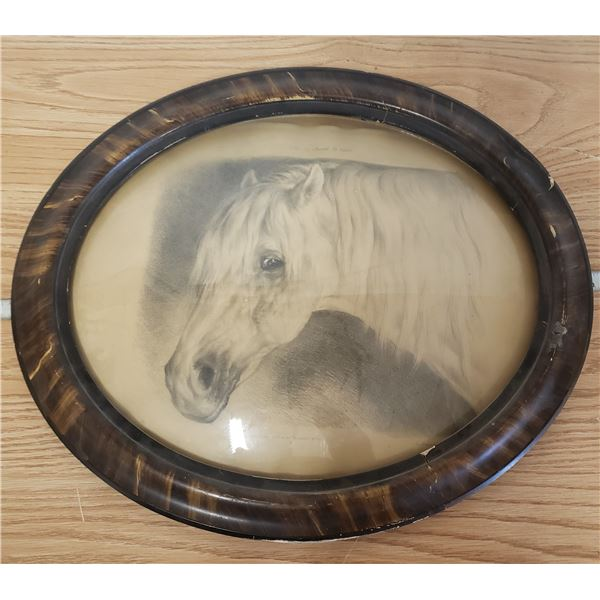 Horse print in antique frame with bevelled oval glass