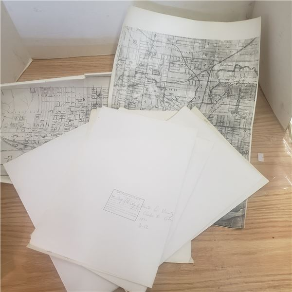 copy of a map of Toronto 1875 Ontario Archive 9 Sheets