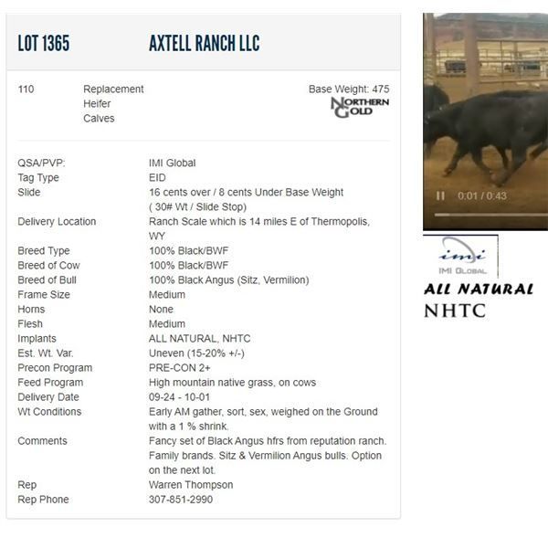 Axtell Ranch LLC - 110 Replacement Heifers Base Weight: 475