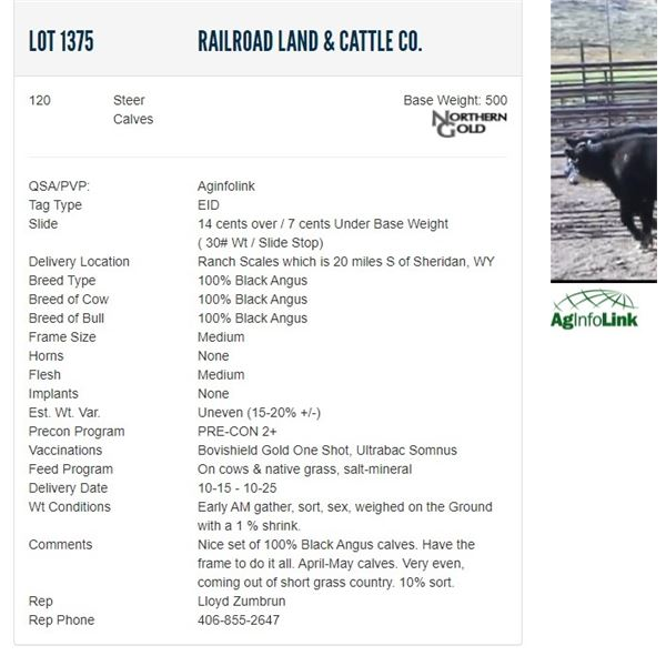 Railroad Land & Cattle Co. - 120 Steers Base Weight: 500