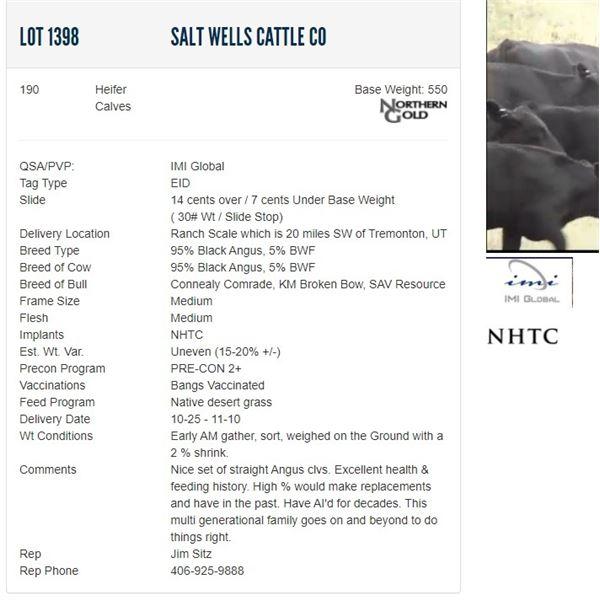 Salt Wells Cattle Co - 190 Heifers Base Weight: 550