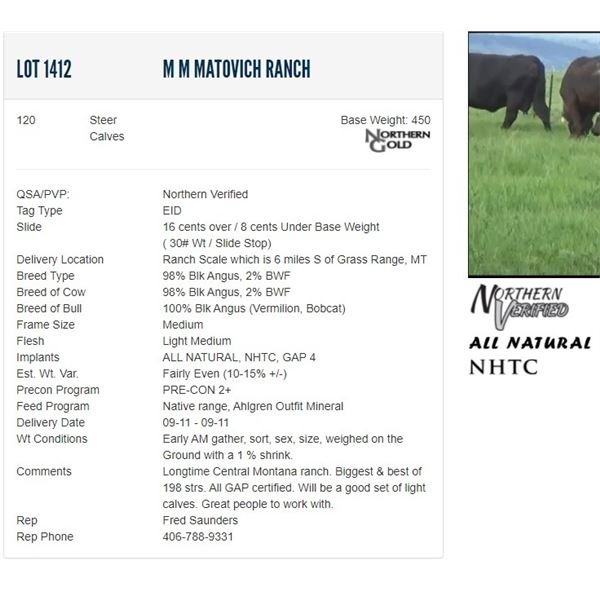 M M Matovich Ranch - 120 Steers Base Weight: 450