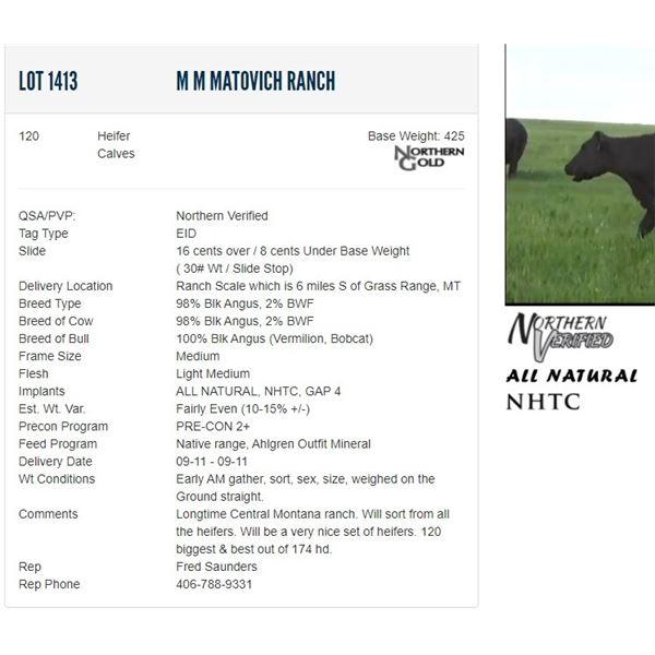 M M Matovich Ranch - 120 Heifers Base Weight: 425