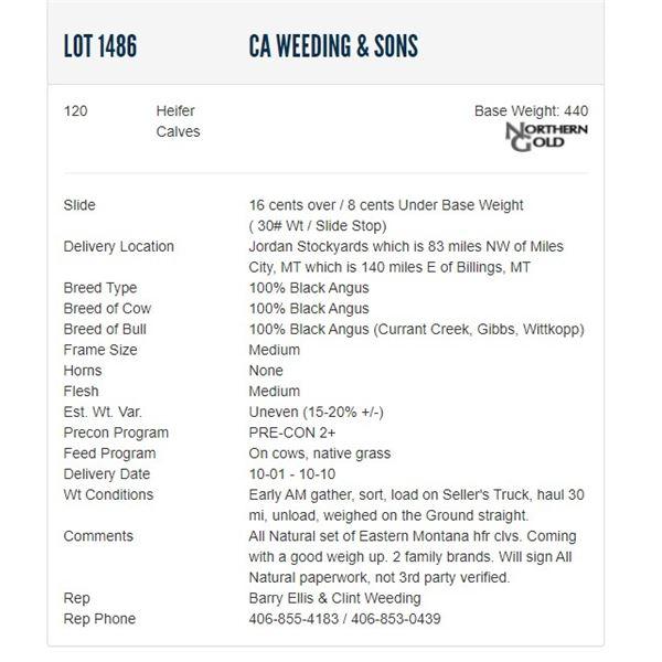 CA Weeding & Sons - 120 Heifers Base Weight: 440