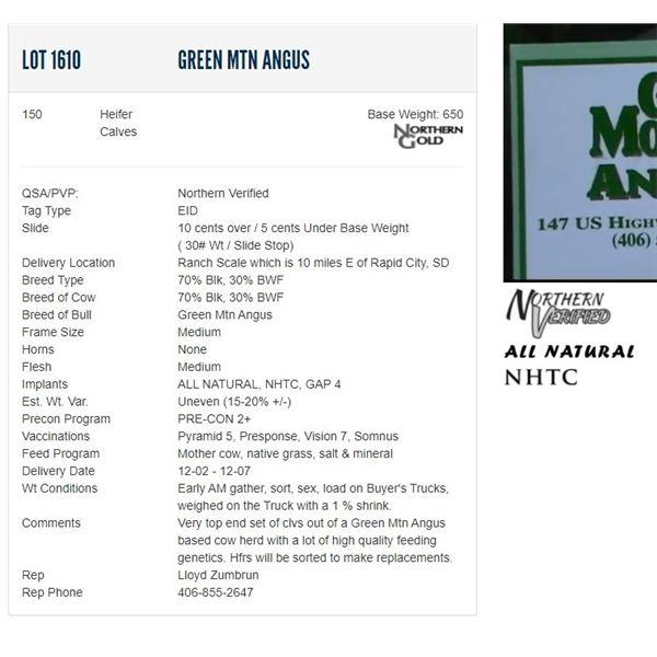 Green Mtn Angus - 150 Heifers Base Weight: 650