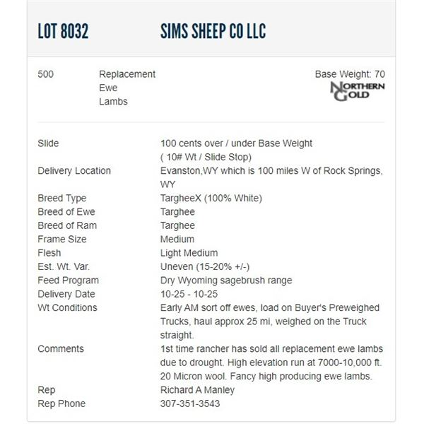 Sims Sheep Co LLC - 500 Replacement Ewes Lambs Base Weight: 70