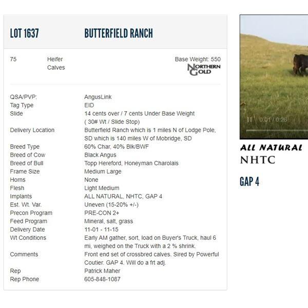 Butterfield Ranch - 75 Heifers Base Weight: 550