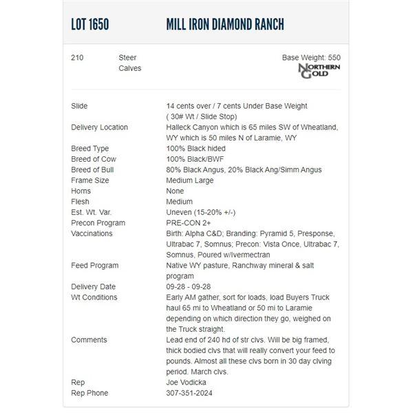 Mill Iron Diamond Ranch - 210 Steers Base Weight: 550
