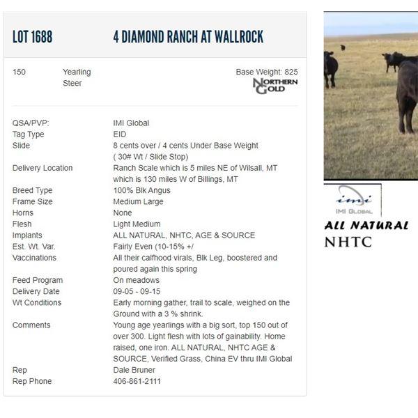 4 Diamond Ranch at Wallrock - 150 Steers Base Weight: 825
