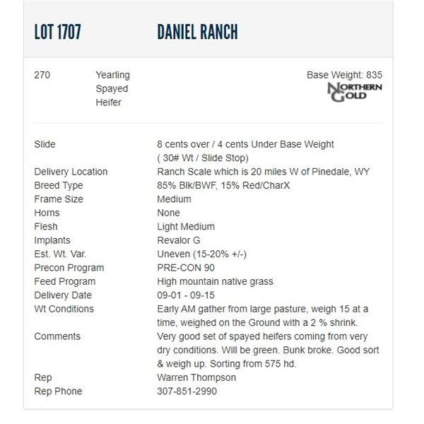 Daniel Ranch - 270 Spayed Heifers Base Weight: 835