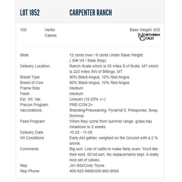 Carpenter Ranch - 100 Heifers Base Weight: 635