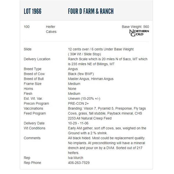 Four D Farm & Ranch - 100 Heifers, Base Weight: 560