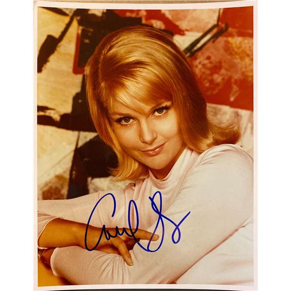 Carol Lynley signed photo