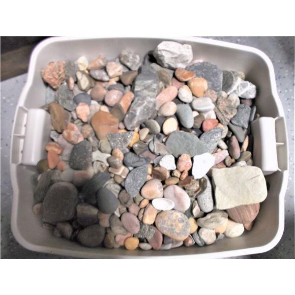 Bin of Rocks, Shells, and Beach Glass
