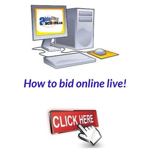 How to bid online live