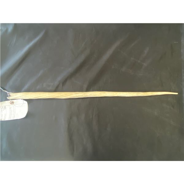 APPROX 2.5' NARWHAL TUSK WITH HUNTING LICENSE