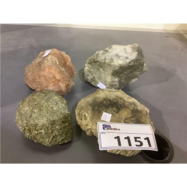 ASSORTED ROCKS AND PETRIFIED WOOD