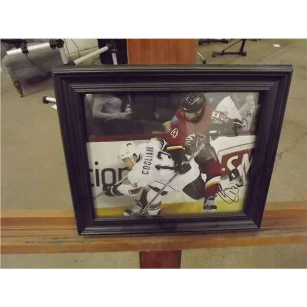 Framed Andrew Cogliano Signed picture (D&M)