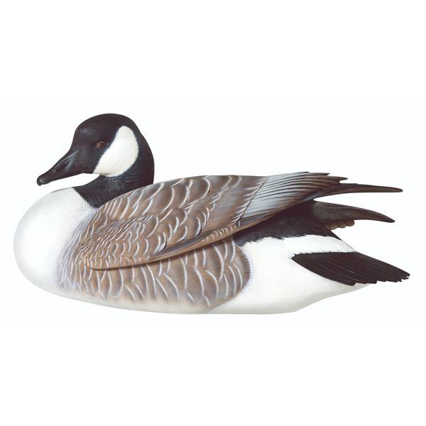 Canada Goose Decoy