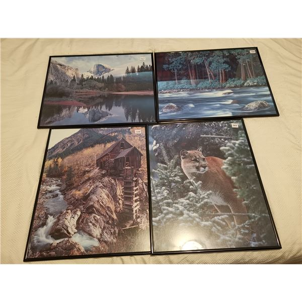 4 Pictures 16 X 20