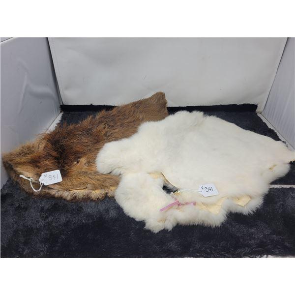 Fur pelts, muskrat and rabbit (1 of each)