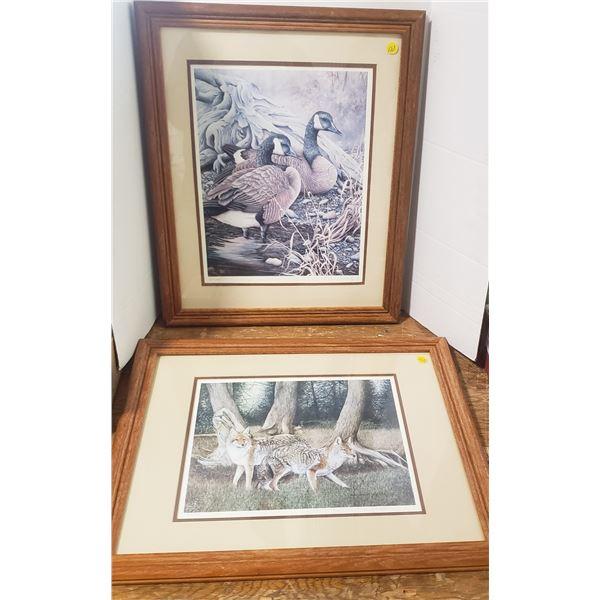 2 framed prints Coyotes (Joyce Bridgett) Signed numbered Candada Geese (Herbert Piki)