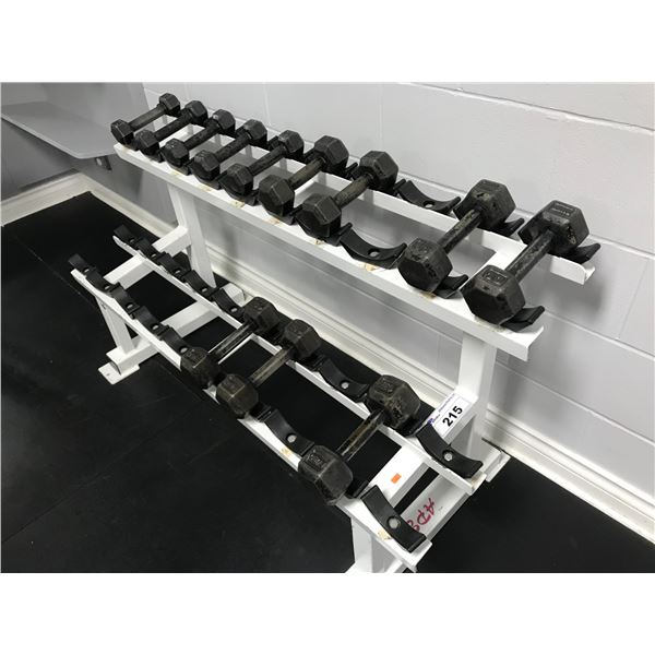 APEX WEIGHT RACK (52 ) WITH WITH ASSTD WEIGHTS (20 PCS, APPROX 166LBS OF WEIGHTS)