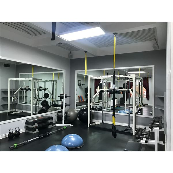 TRX TRAINING HARNESS WITH 8 TRX CEILING MOUNT SUPPORTS