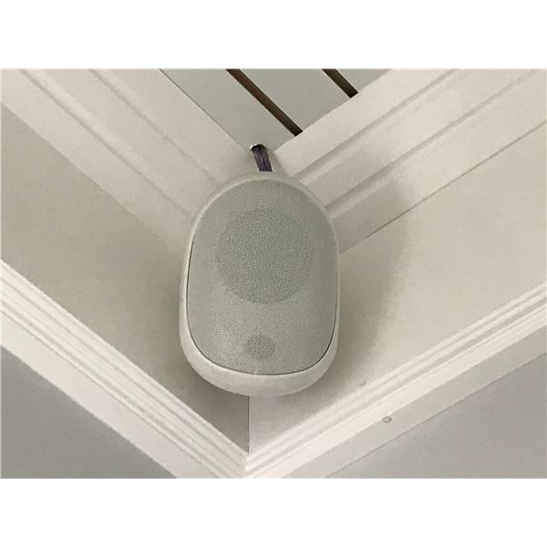 4 REMOTE SPEAKERS (MUST BE REMOVED FROM CEILING)