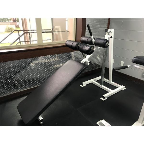 APEX INVERTED SIT-UP MACHINE