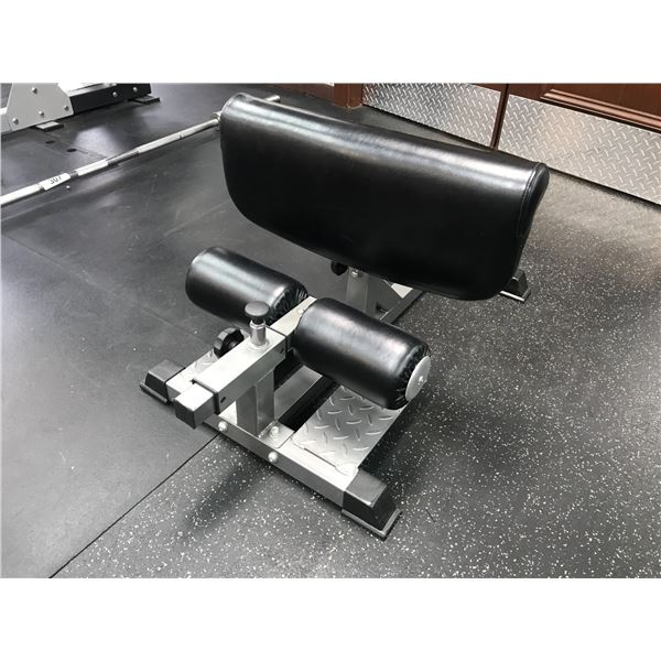 ELEMENTS FITNESS HAMSTRING WORKOUT DEVICE