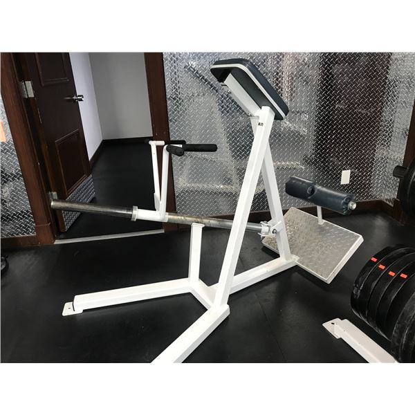 INCLINE WEIGHT LIFTING STATION (BICEP PULL) MINOR UPHOLSTERY DAMAGE